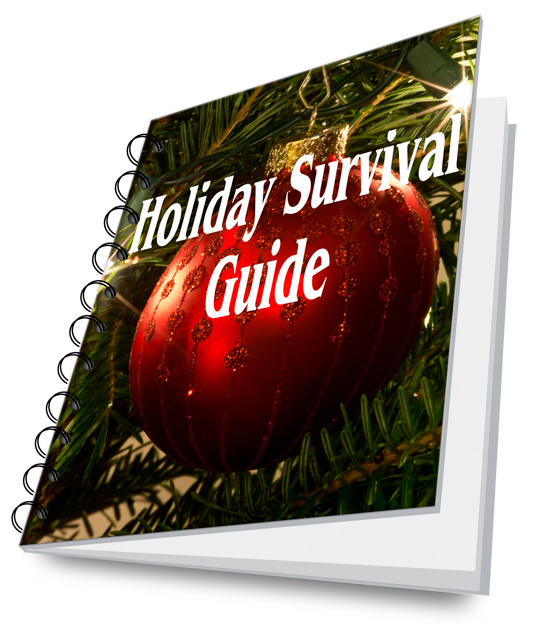 holiday survival guide book cover